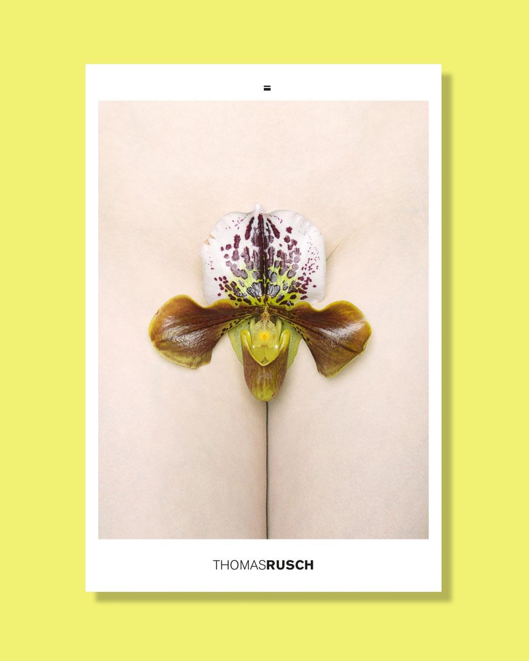 Thomas Rusch — Catalogue
